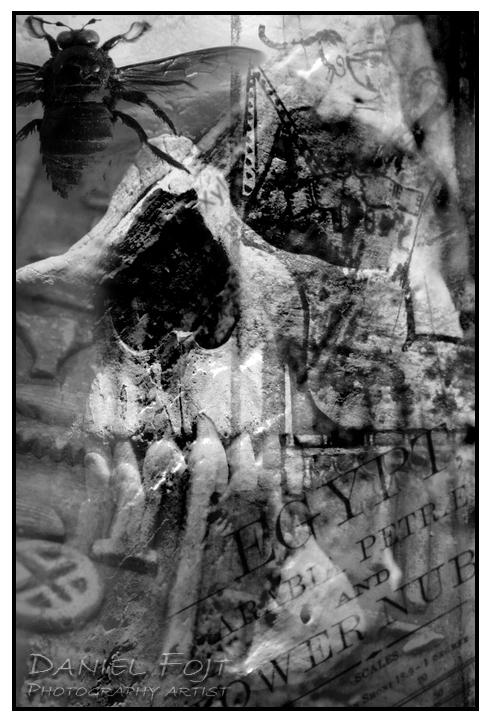 Daniel Fojt - 012Egypt Series - Skull